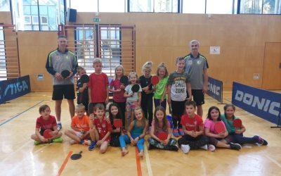 Tischtennis Workshop